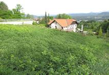 Grundstück Velden